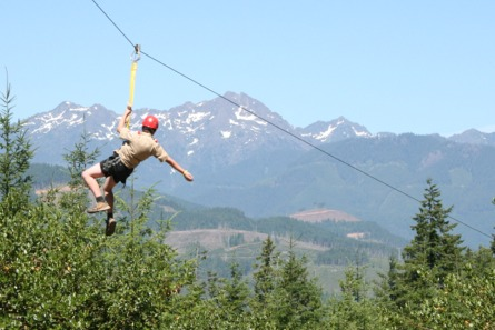 homer simpson on a zip line ride